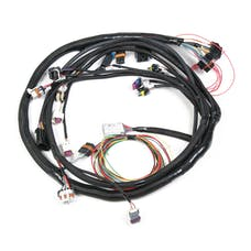 Holley 558-103 LS2 MAIN HARNESS