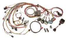 Painless 60214 Fuel Injection Harness Standard Length