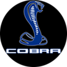 Race Sport Lighting RS-2GS-COBRABLUE Cobra Blue Custom Ghost Shadow Door Valet Kit